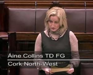 2011-11-16-Áine-Collins-TF-FG-speaking-in-the-Dáil-300x242